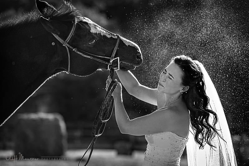 Bride and her horse-Bellevue Wedding